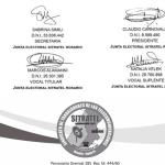 Junta electoral: Resolución Nro. 15
